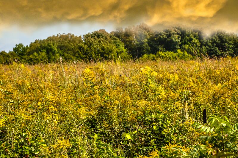 Rain Clouds Forming Over Iowa Country Side stock photo