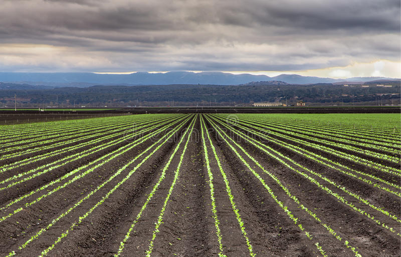 Download Rain Clouds Over Salinas Valley Stock Image - Image: 37687867