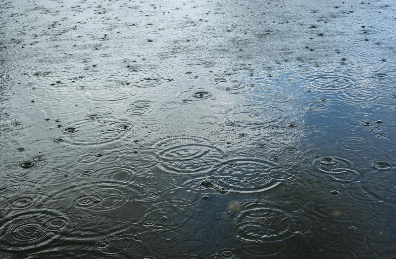 Download Rain drops stock image. Image of background, circle, nature - 14453169