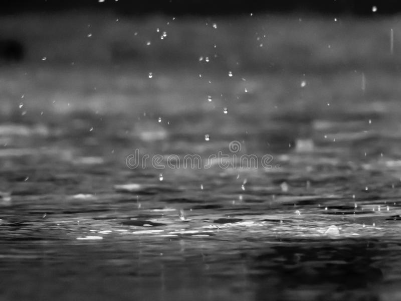 Rain drops in a chilly day. Rain drops and contact waves captured on a chilly autumn night royalty free stock image
