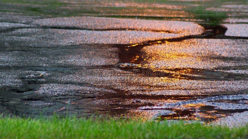 Rain drops fall into puddles selective focus. Puddle of water in rain drops fall into puddles selective focus stock photography