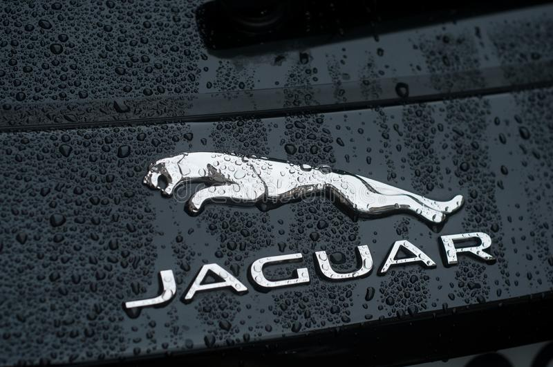 Rain drops on Jaguar logo on black car parked in the street. Mulhouse - France - 26 September 2019 - Closeup of rain drops on Jaguar logo on black car parked in royalty free stock photography