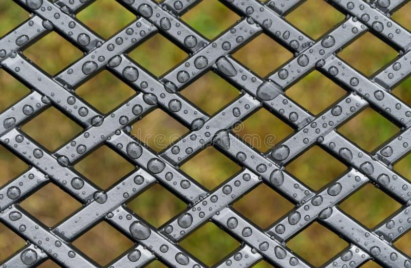 Rain drops on metal lattice frame stock images