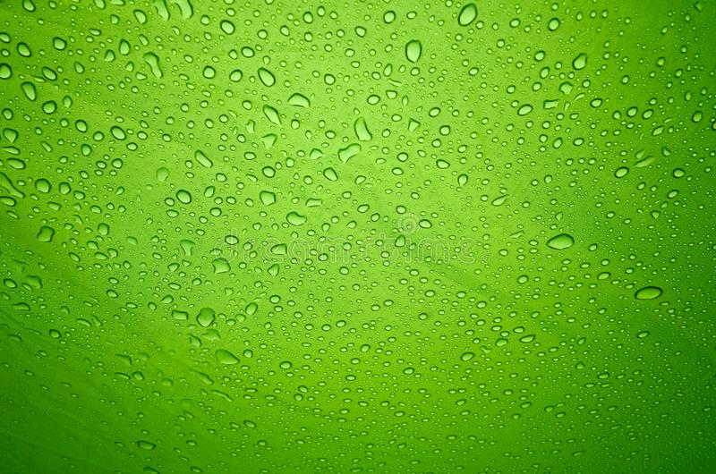 Rain drops on the solid abstract green background royalty free stock photo