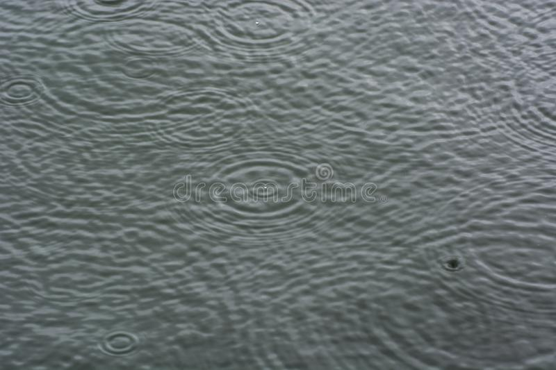 Rain drops on surface, soft blur and soft focus. Rain drops on the surface, soft blur and soft focus royalty free stock images