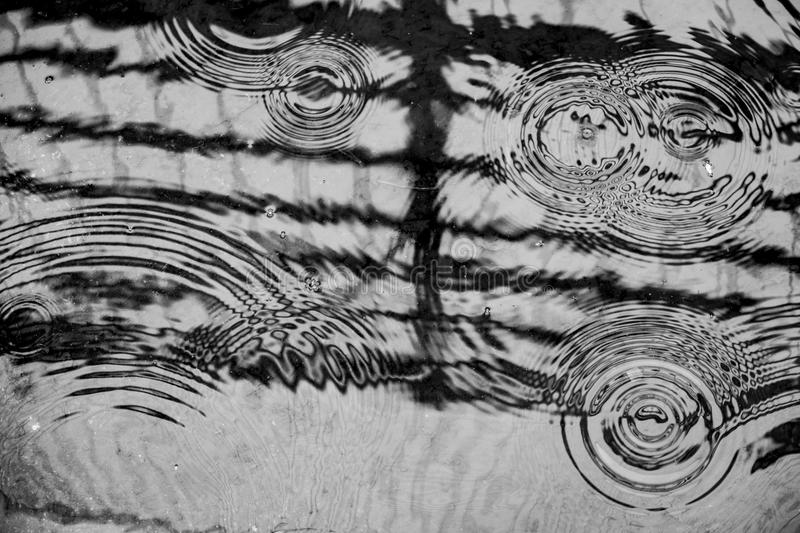 Rain drops on the water, circles texture background black and white stock photo