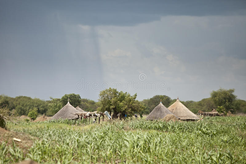 Rain falling near huts in south Sudan stock image