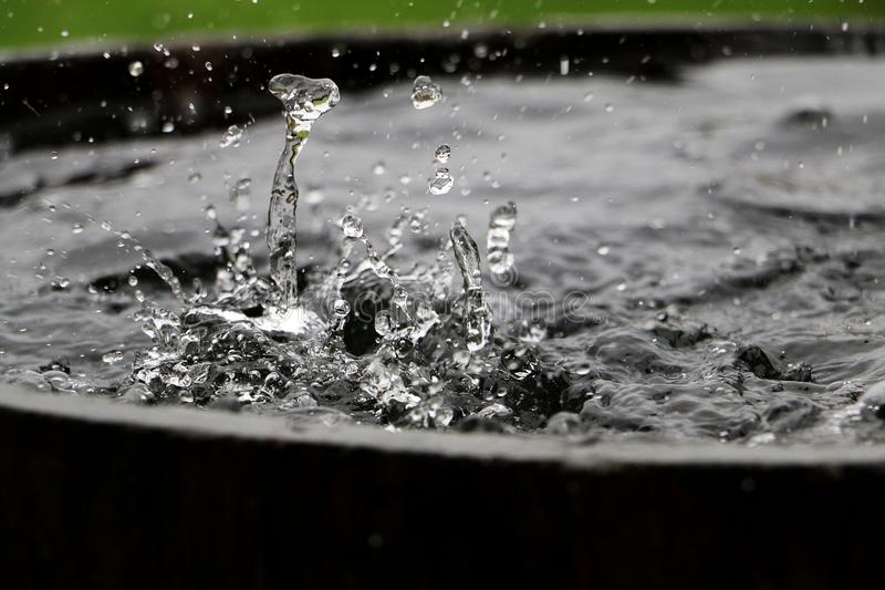 Falling rain in a barrel. Rain is falling in a wooden barrel full of water in the garden royalty free stock images