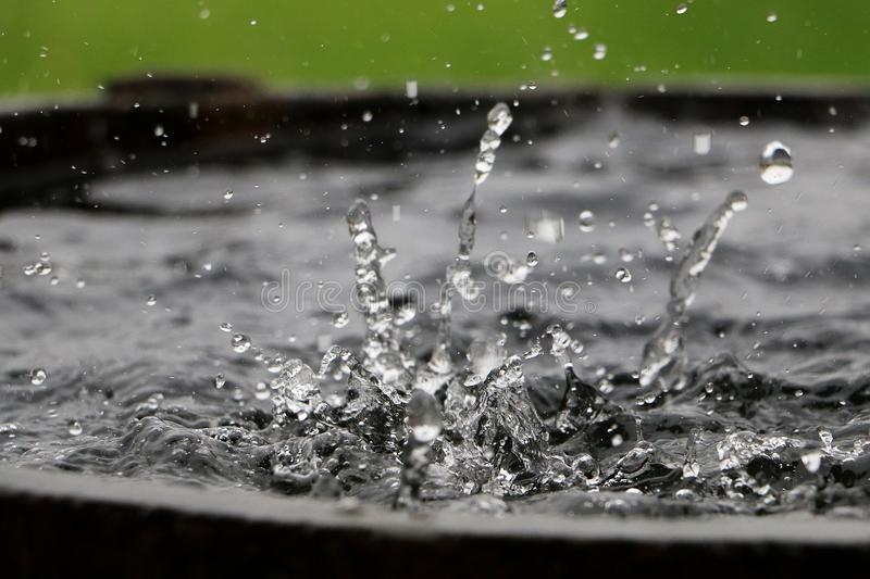 Falling rain in a barrel. Rain is falling in a wooden barrel full of water in the garden stock photography