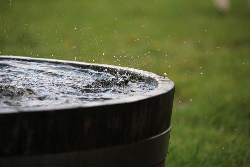 Rain is falling in a wooden barrel full of water in the garden. Splashing rain in the barrel stock photography