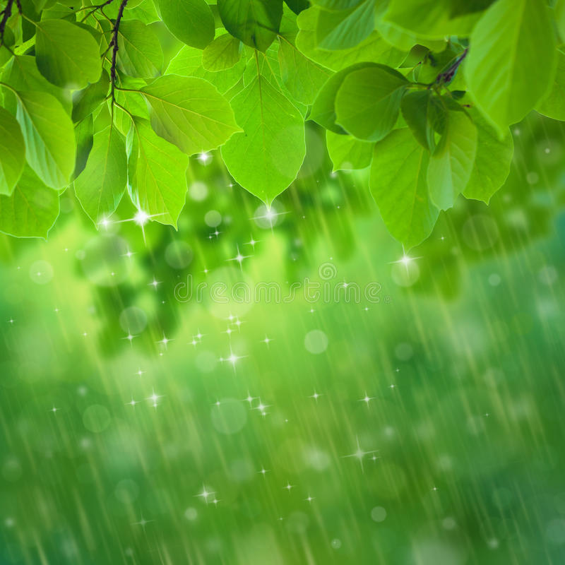 Rain falls stock photography