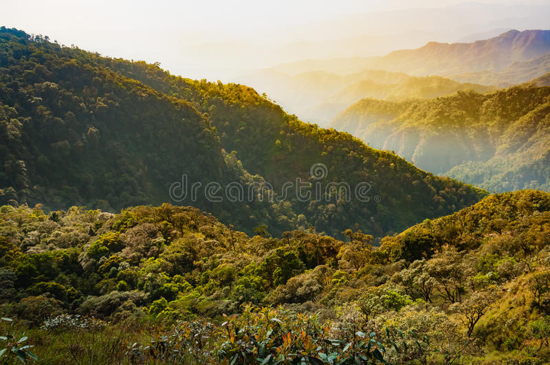 Rain forest on the mountain and valley behind in Tak, Thailand. Rain forest on the mountain and the valley behind in Tak, Thailand stock photography