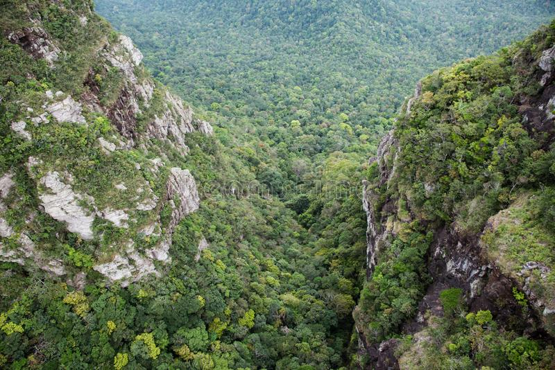 Rain forest notch royalty free stock photography