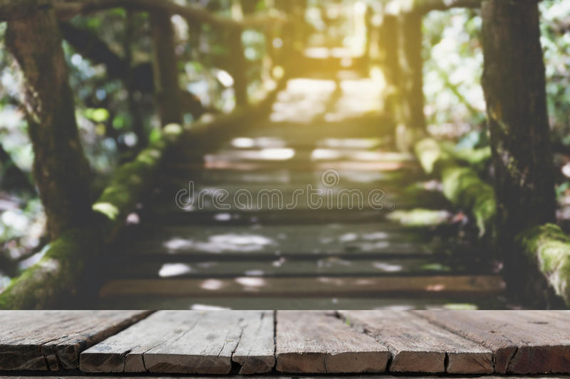 rain forest walk way in Ang Ka nature trail located in Doi inthanon national park, the highest peak in Thailand (blur image) with stock photography