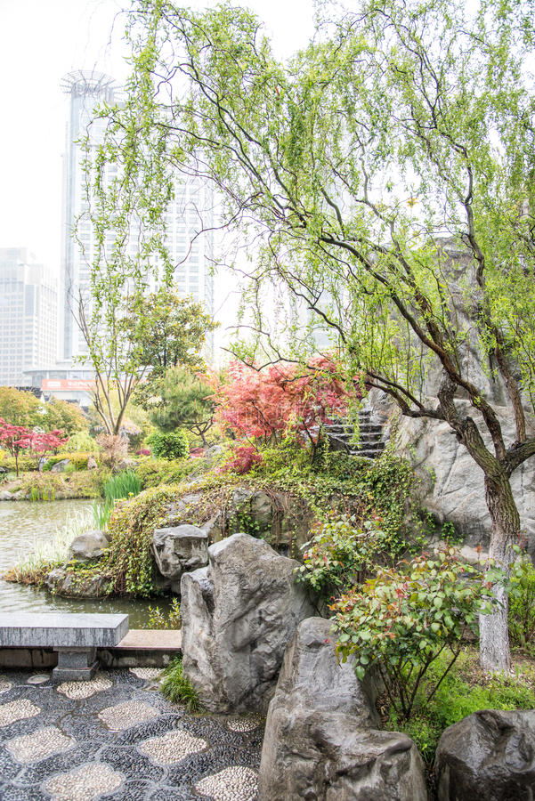The rain garden royalty free stock photography