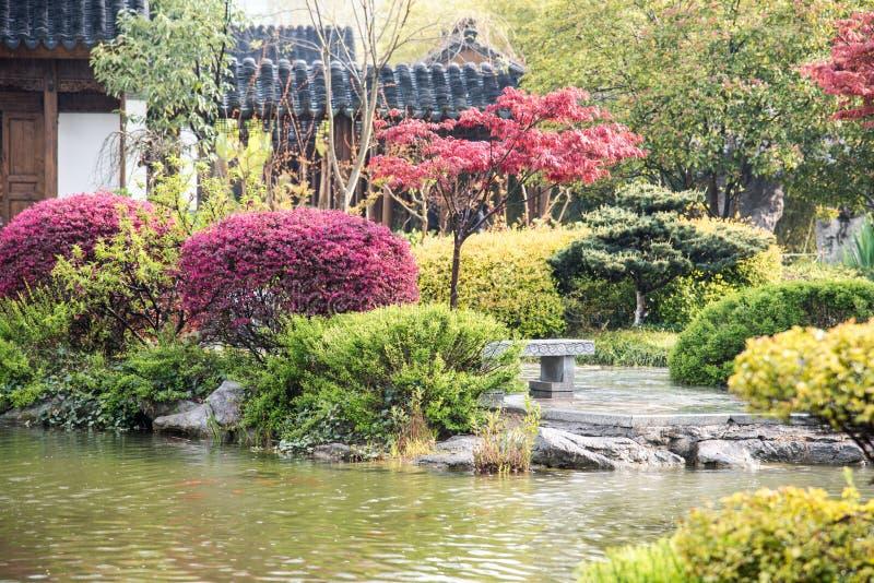 The rain garden stock image
