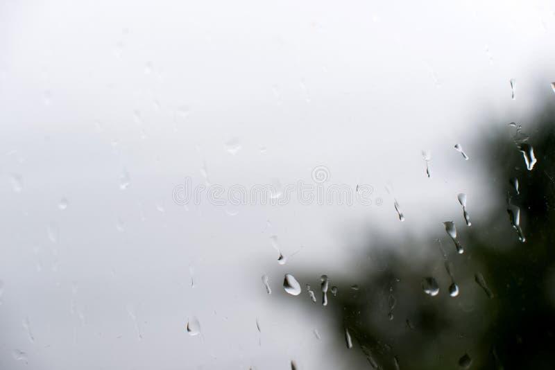 Rain on glass. Of the window royalty free stock photo