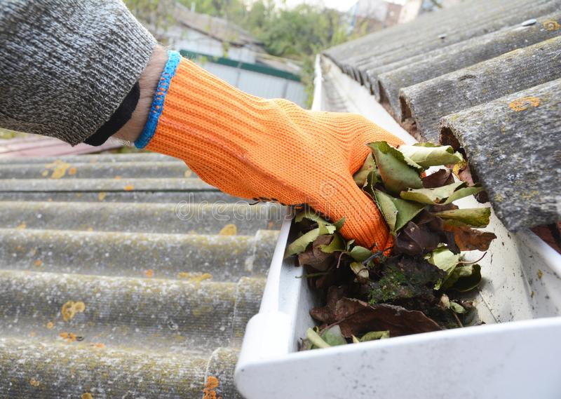 Rain Gutter Cleaning from Leaves in Autumn with hand. Gutter Cleaning. Roof Gutter Cleaning Tips. stock photo