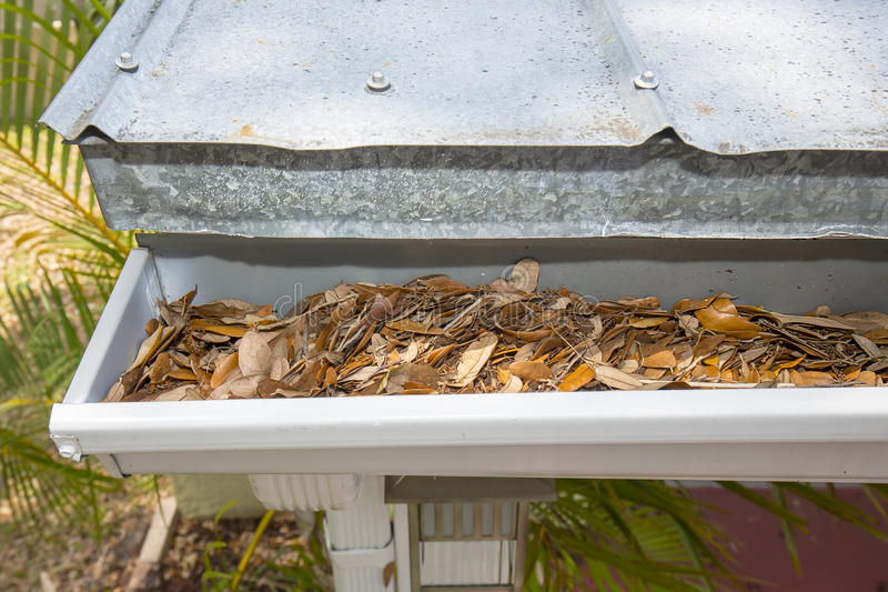 Rain Gutter Clogged With Leaves stock image