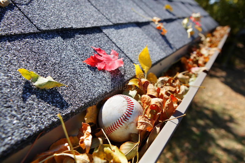Rain gutter full of autumn leaves with a baseball. A baseball in the rain gutter that is full of fall leaves royalty free stock photography