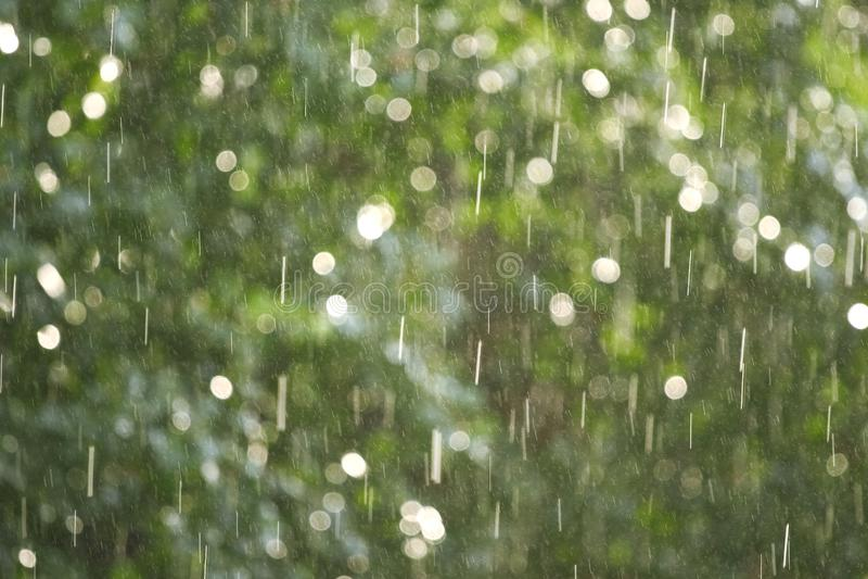 Rain illuminated by a sunlight stock images