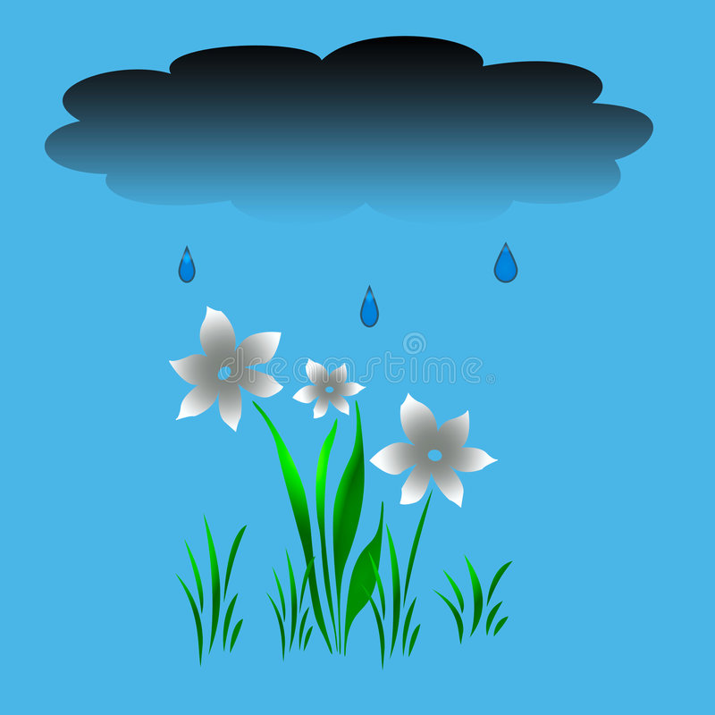 Free Rain In The Garden Royalty Free Stock Photos - 4421658