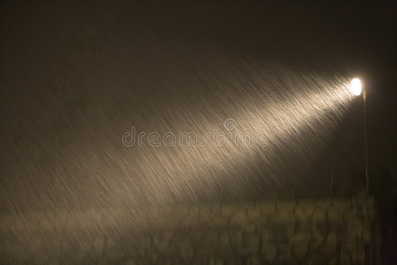 Rain during the night. In spot royalty free stock photo