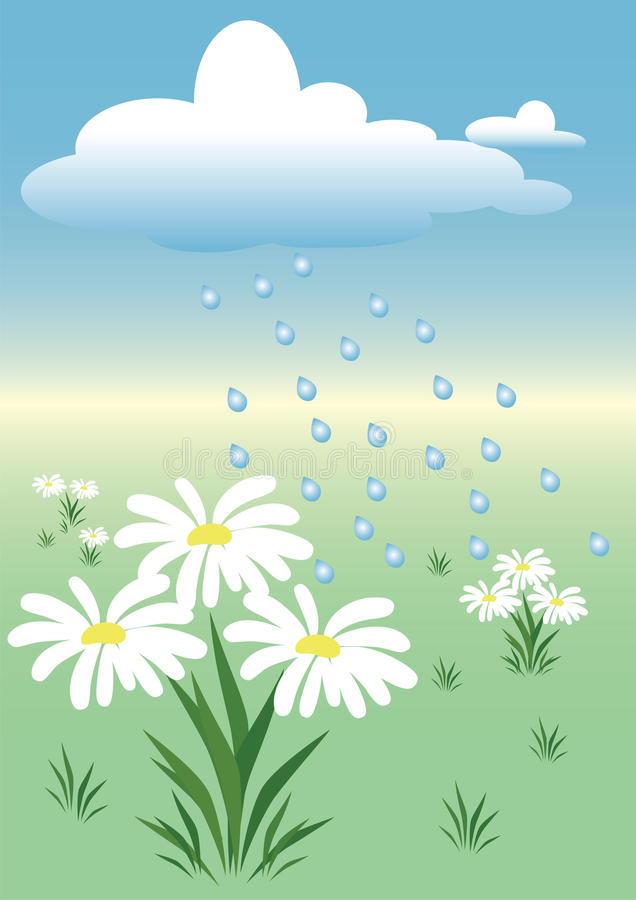 Free Rain On The Meadow Royalty Free Stock Images - 14006089