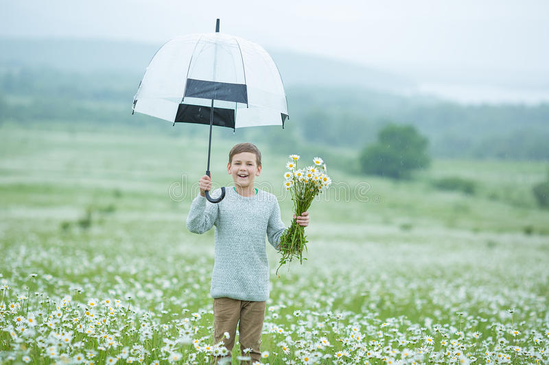 Rain and sunshine with a smiling boy holding an umbrella and running through a meadow of wildflowers dundelions chamomile daisy an. D holding bouquet stylish stock images