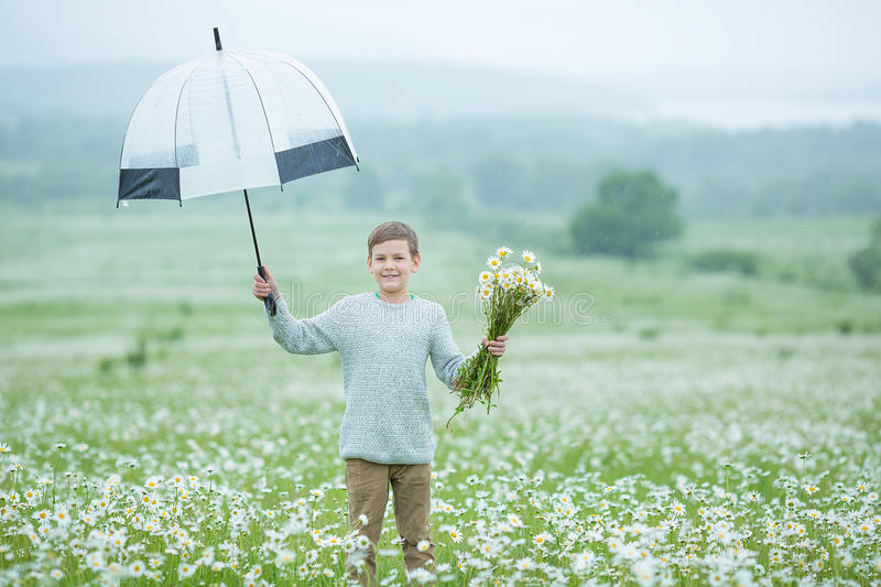 Rain and sunshine with a smiling boy holding an umbrella and running through a meadow of wildflowers dundelions chamomile daisy an. D holding bouquet stylish stock image