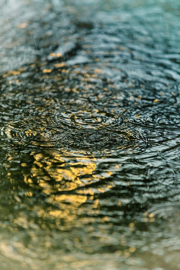 Rain texture royalty free stock photo