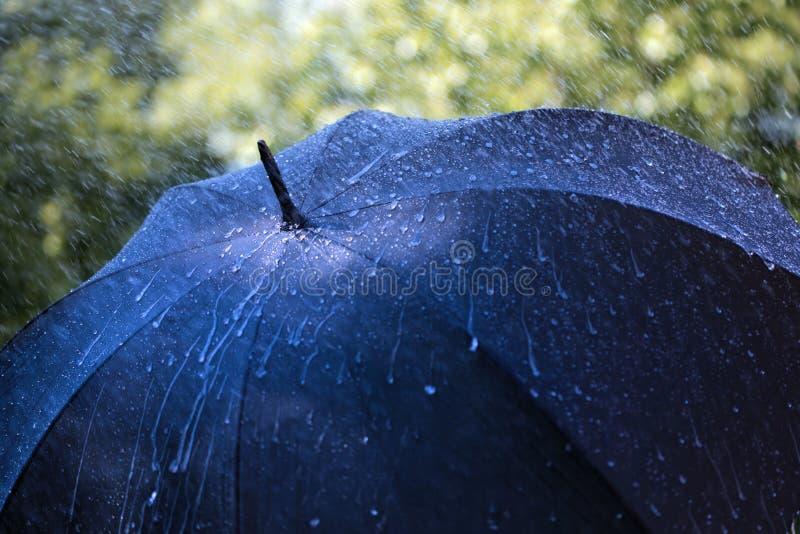 Download Rain on umbrella stock photo. Image of black, sheltering - 31872388