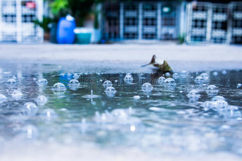 Rain water drops. And with abstract blur background.vintage royalty free stock photography