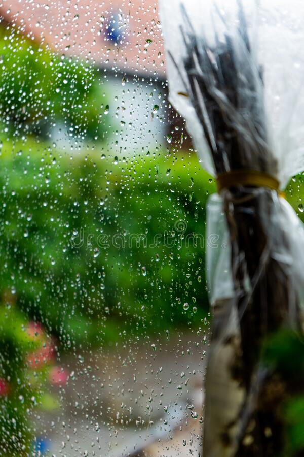 Rain at the window with green background stock images