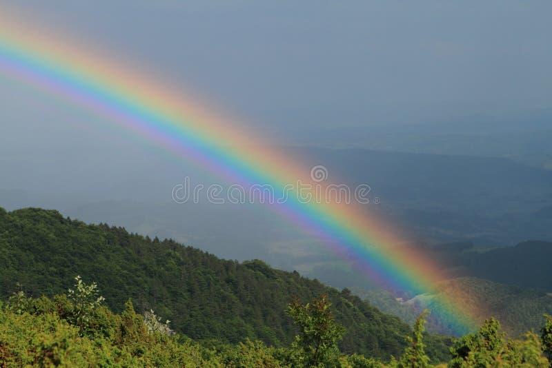 Rainbow. Over a mountain forest