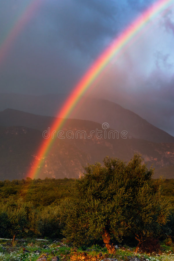 Rainbow. Image shows a vivid rainbow above a countryside field royalty free stock images
