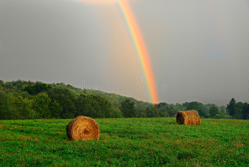 Rainbow royalty free stock images