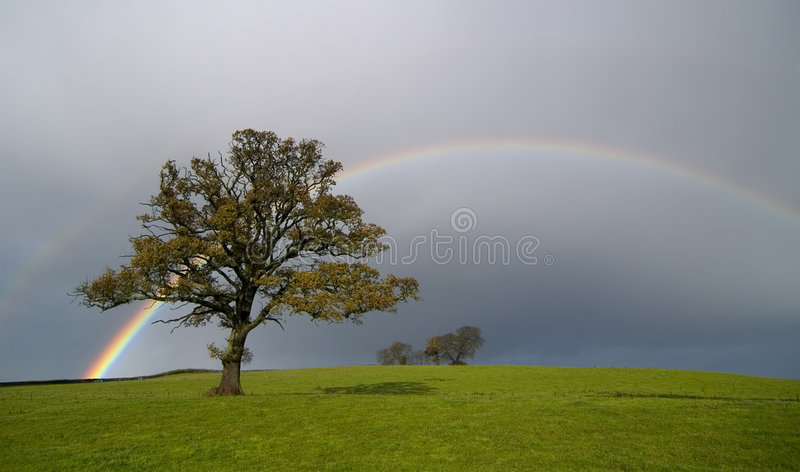 Rainbow. Scene on a country landscape
