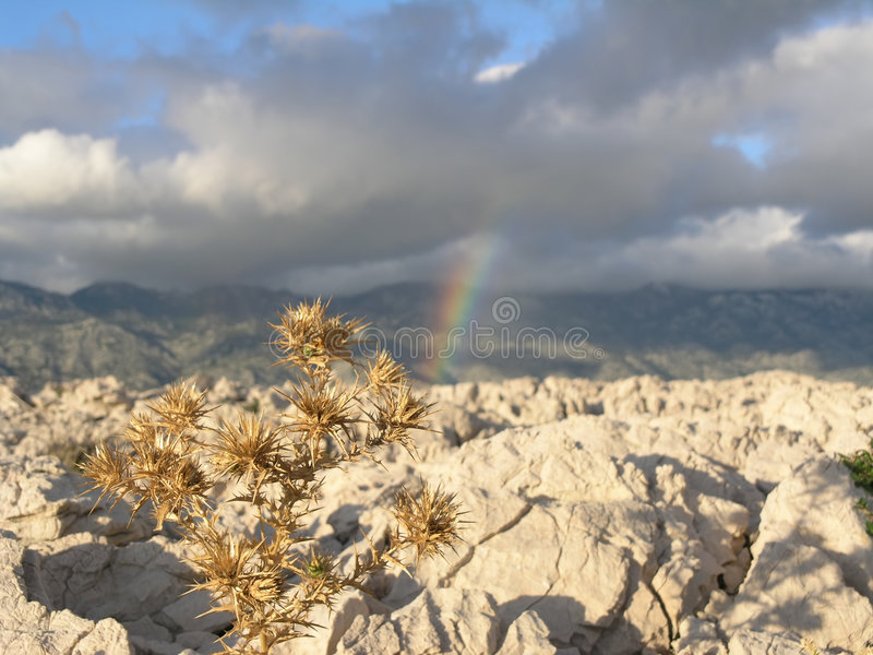 Download Rainbow stock photo. Image of landscape, stone, cloud, flower - 522980