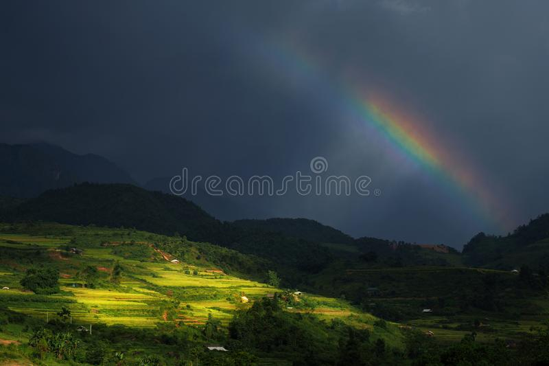 Rainbow above the summer rice-fields stock images