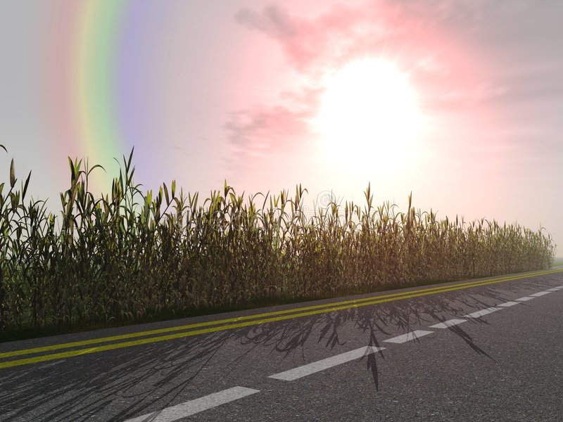 Rainbow and bright sunrise. Rainbow and bright dawn on a background asphalt of road and bushes on a roadside royalty free stock photo