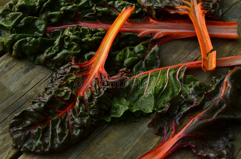 Rainbow chard. Orange, red, pink, yellow colors in the stems of Rainbow chard leaves on rustic wood tabletop stock photography