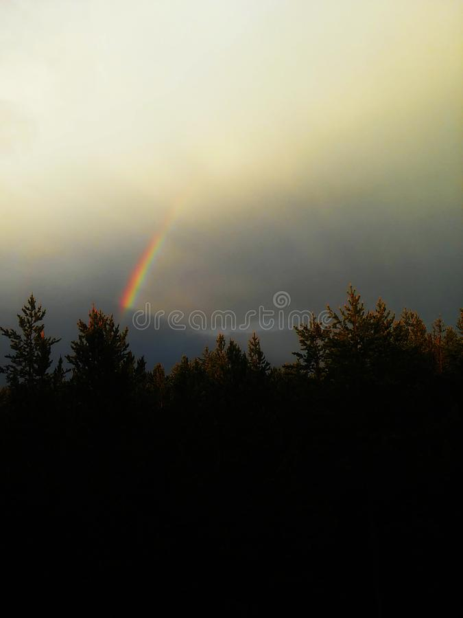 Rainbow in cloudy sky over the forest stock image