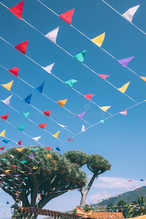 Rainbow of colorful bunting flags tied to a Dragon Tree on blue sky on background, Spain royalty free stock photos