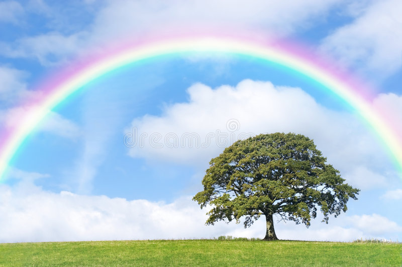 Rainbow Day stock images