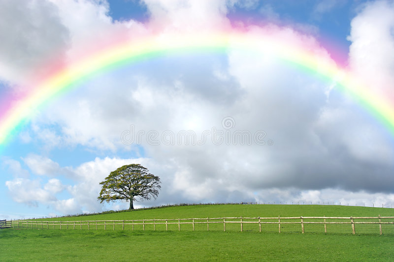 Rainbow Day. Rural landscape in autumn with an oak tree and a field with a wooden fence, set against a blue sky with cumulus storm clouds and a rainbow royalty free stock photos