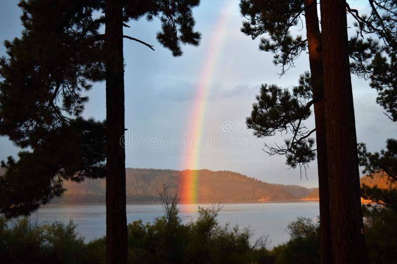 Rainbow Dips into Lake in Early Morning Light Following Rain. Pine trees silhouetted against blue-gray skies and rainbow that dips into mountain lake stock images