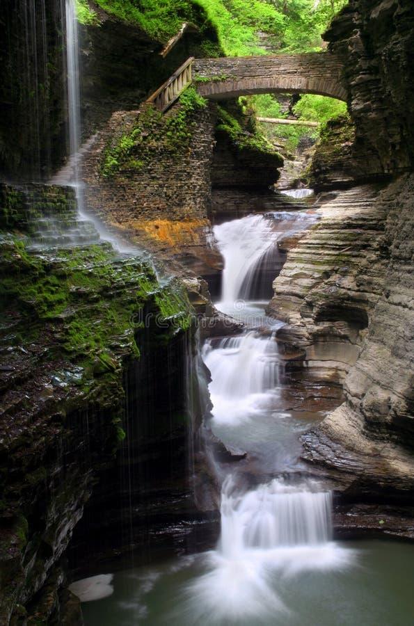 Download Rainbow Falls stock photo. Image of nature, glen, waterfall - 2586600