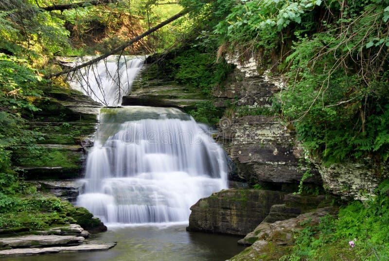 Download Rainbow Falls stock photo. Image of rocks, flow, trails - 2586608
