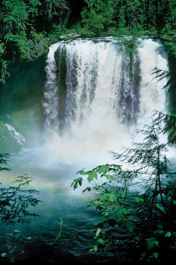 Rainbow Falls royalty free stock image